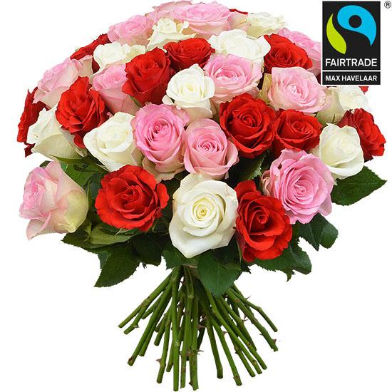 Roses équitables - Merveilleuses Roses